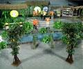 Người nội trợ tài ba (22/02/2009)