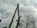 Hơn 60 hộ dân ấp Tân Quới Hưng chưa có điện kế sử dụng