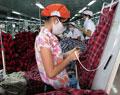 Bình Minh mở lớp đào tạo nghề ngắn hạn