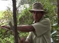 Ký sự truyền hình: Nhớ rừng