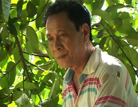 Ông Lê Khánh Hồng làm giàu từ cây măng cụt